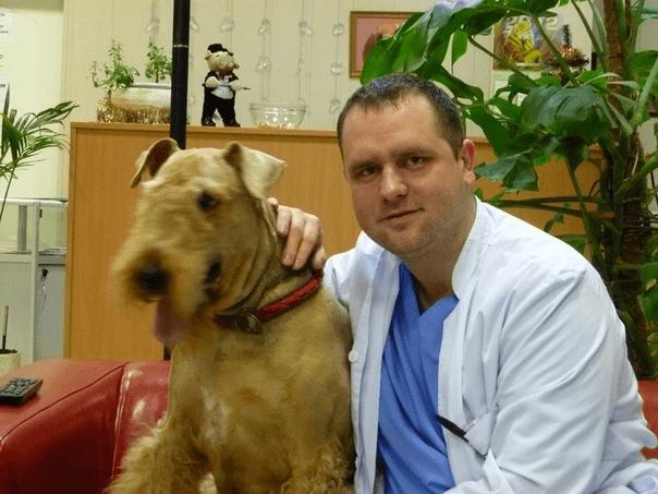 Ветеринар-дерматолог в Апрелевке - Юрасов Александр Валерьевич